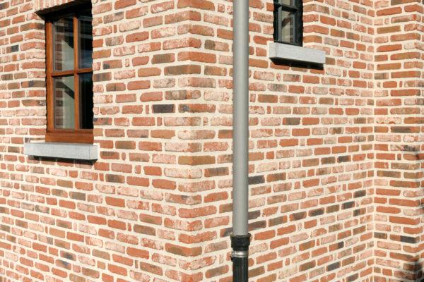 Antwerps klompje (2)