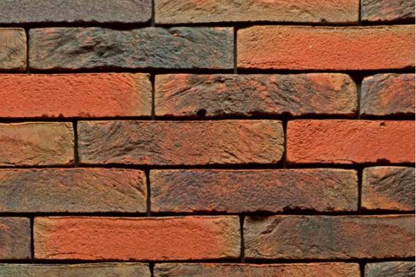 Pagus-rood-bruin